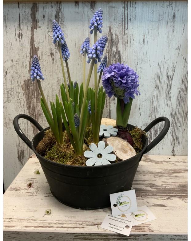 Пролет в саксия
